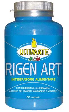 Rigen Art