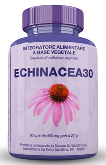 Echinacea 30