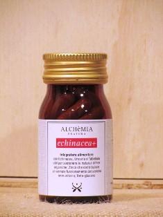 Echinacea+