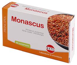 Monascus