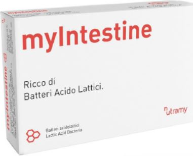 MyIntestine