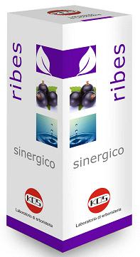 Ribes Sinergico