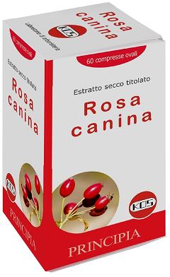 Rosa Canina 70% + Vitamina C